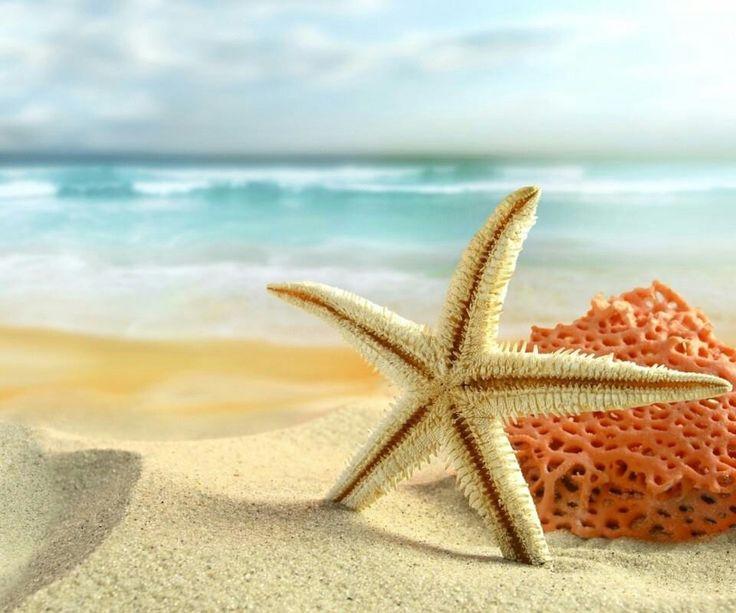 turismo sol y playa