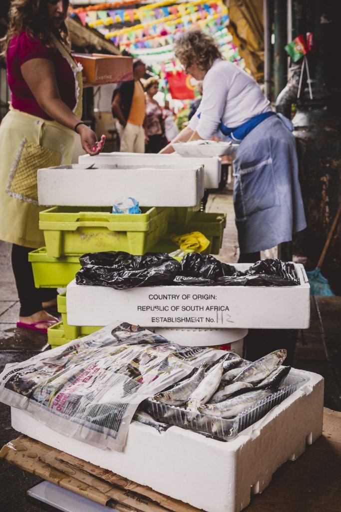 Mercado Oporto-8